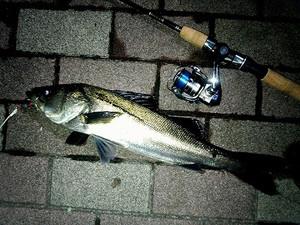 Fishing16041402